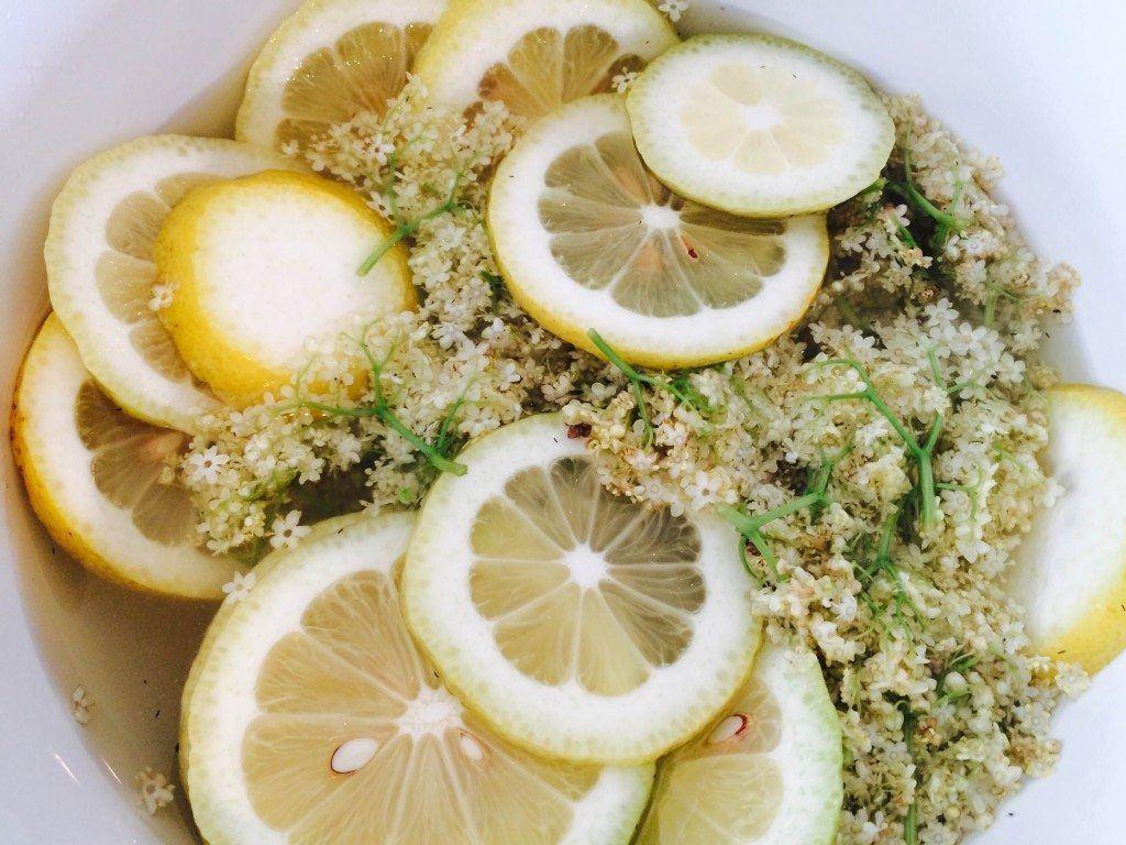 Den færdige hyldeblomst med vand, citronskiver, sukker og citronsyre skal trække i 5-6 dage.