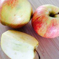 billederesultat for æblegrød