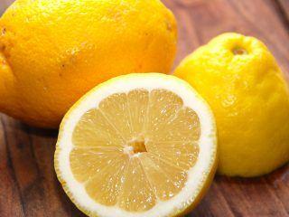 Citronfromage er en gammel dansk klassisk dessert, som slevfølgelig laves med økologiske citroner. Foto: Madensverden.dk.