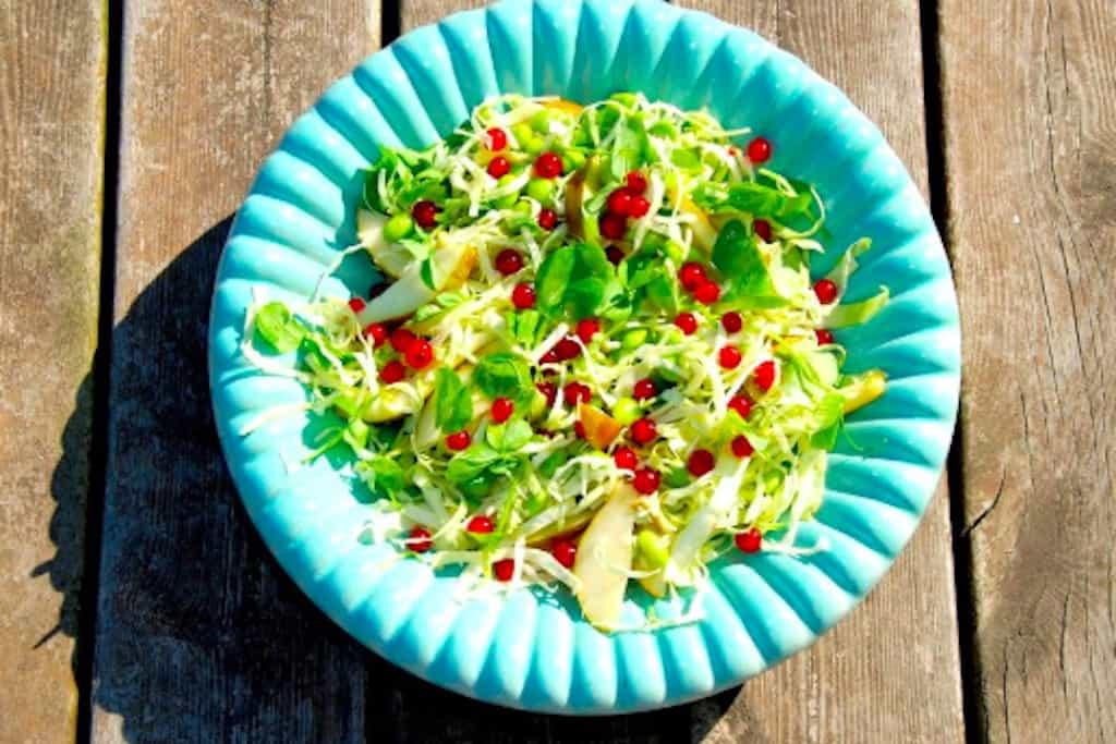 Sommersalat med spidskål, ribs, ærteskud og edamame