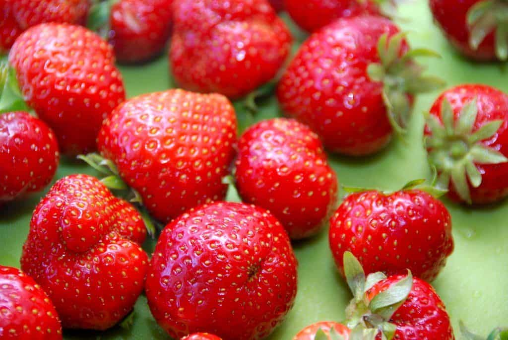 Hvis leder efter en god opskrift på grød, så er du landet det rigtige sted. Her er opskrifter på jordbærgrød, rabarbergrød og æblegrød. Foto: Guffeliguf.dk.