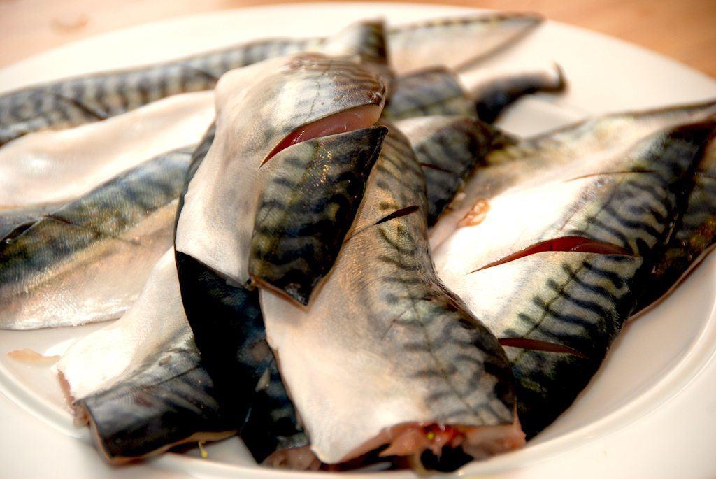 Grillet makrel med hvidløgsolie og friskkværnet peber