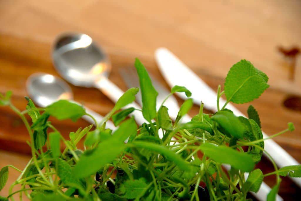 Du kan nemt lave din egen tunsalat med dåsetun. Opskriften indeholder kun lidt mayonnaise, så den er ikke alt for fed. Genrefoto: Guffeliguf.dk.