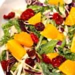 salat med appelsin og kål