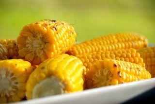 Grillede majs med og uden blade opskrift