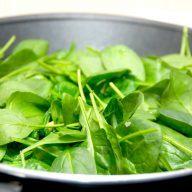 Dampet spinat med hvidløg er meget nemt tilbehør, som samtidig er særdeles sundt. Den friske spinat dampes på en pande sammen med lidt smør. Foto: Madensverden.dk.