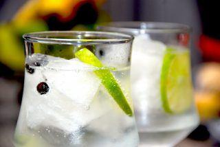 Gin og tonic opskrift med lime og enebær
