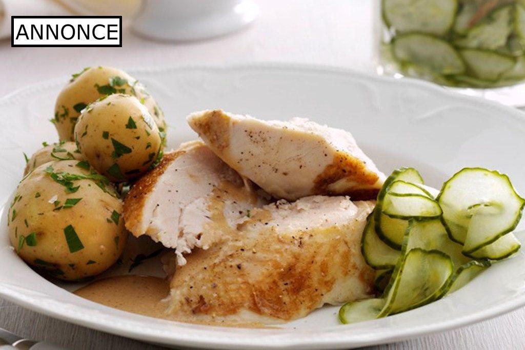 Grydestegt kylling med agurkesalat