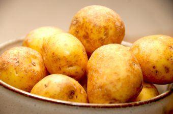Kartofler er elsket af de fleste, og kartoflerne kan da også anvendes til det meste. Kartoflerne kan både koges, bages, steges, moses og meget andet. Samtidig indeholder de vigtig næring for os, og derfor bør man spise en del af knoldene. Foto: Madensverden.dk.