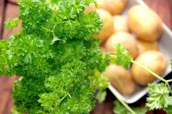 Persille – derfor skal du spise meget mere persille