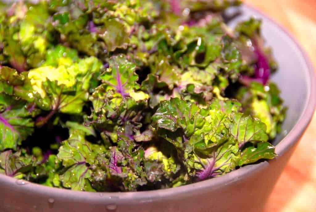 Flowersprouts ser ikke alene lækre ud, de smager også virkelig godt. Og især hvis du er glad for kål, for de dejlige flowersprouts er en blanding af grønkål og rosenkål. De kan både koges, steges og spises rå i salater. Foto: Madensverden.dk.