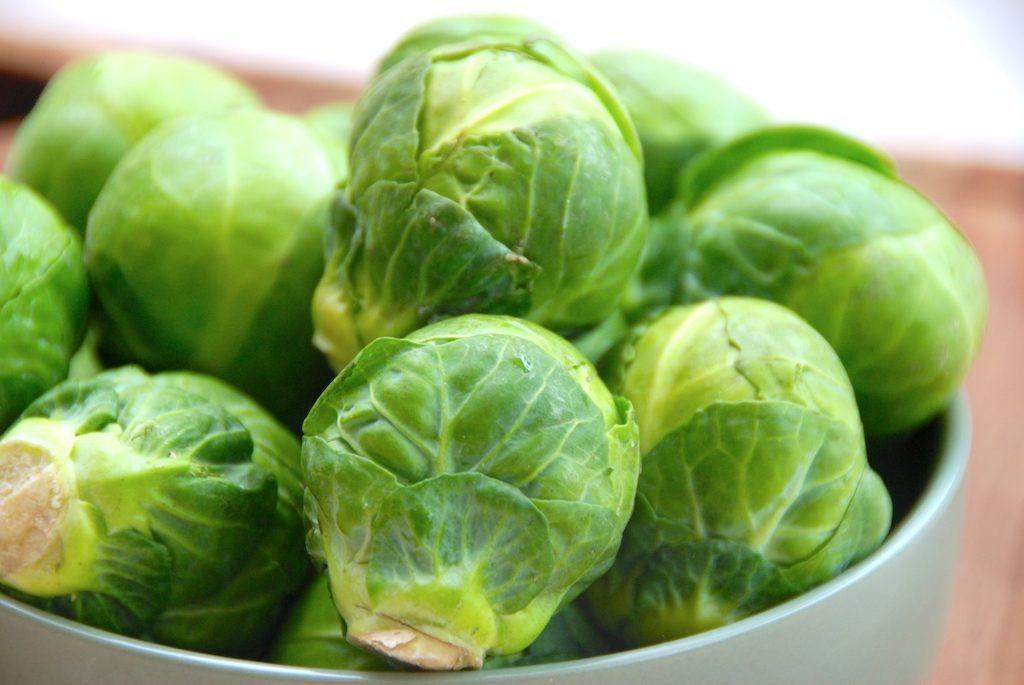 roenkål brussel sprouts fakta næringsindhold