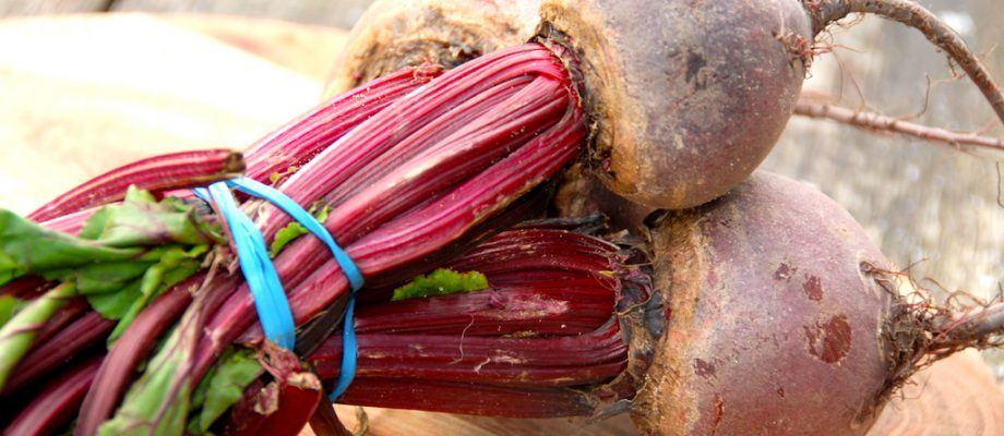 De fleste køber syltede rødbeder på glas, men det er en skam, for rødbederne er nemme at sylte selv. Det kræver blot lidt sukker og eddike. Foto: Madensverden.dk.