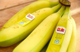 Du bør spise en banan om dagen, for bananerne er sunde og indeholder mange vigtige næringsstoffer. Bananen er da også kloden rundt en af de mest spiste frugter, og så kan den jo bruges til alverdens ting i køkkenet. Foto: Madensverden.dk.