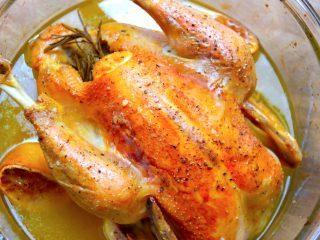 Her får du de fem mest lækre og spændende opskrifter med kylling, og du kan blandt andet lave denne langtidsstegte kylling i ovn. Kyllingen bliver super mør, og disse opskrifter er en virkelig god inspiration når kyllingen skal tilberedes. Foto: Madensverden.dk.