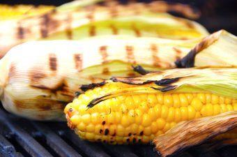 Billed resultat for grillede majskolber