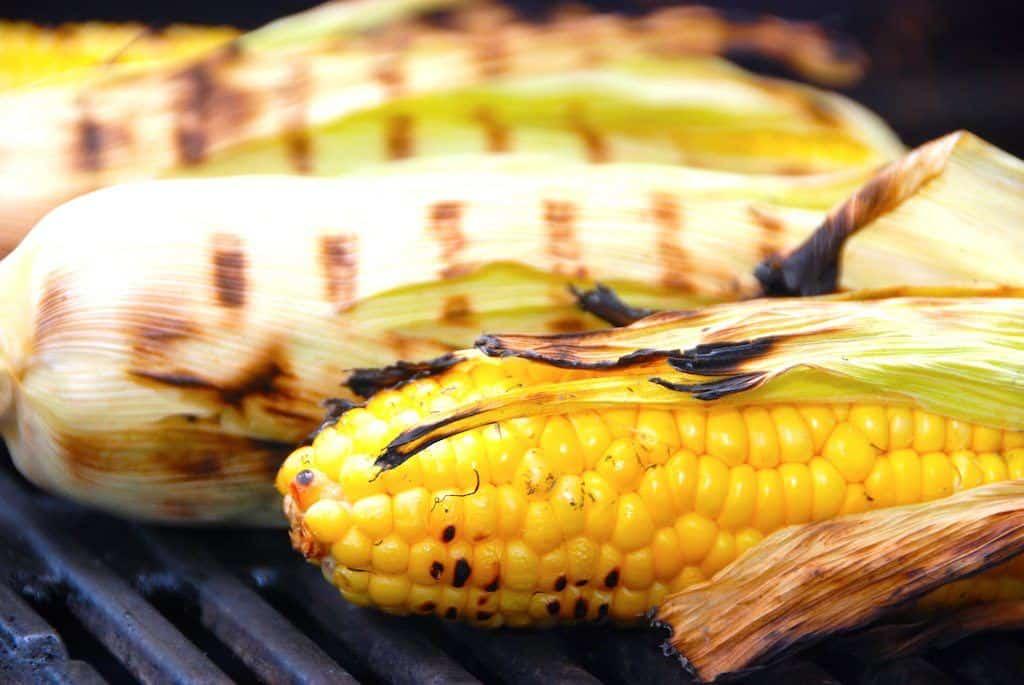 Majskolber er fremragende at lægge på grillen, og du behøver ikke koge dem først. Det er dog en god idé, at lægge majskolberne i koldt vand inden de grilles. Foto: Holger Rørby Madsen, Madensverden.dk.