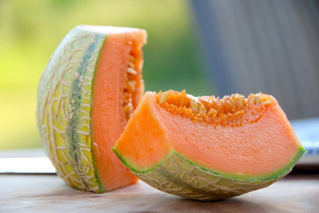 billede resultat for opbevaring af melon