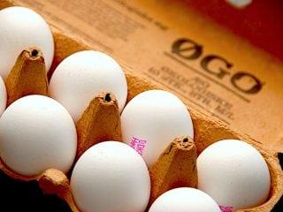 Billede resultat for opskrifter med æg