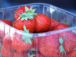 opbevaring af jordbær