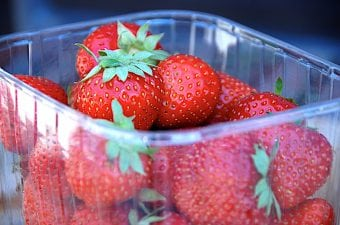 Opbevaring af jordbær, hindbær, blåbær og andre bær