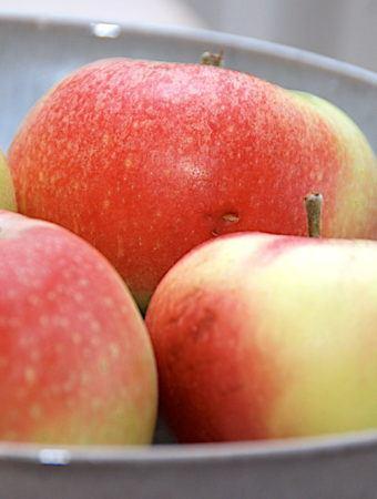 Æbler – fakta, opskrifter og næringsindhold i æbler