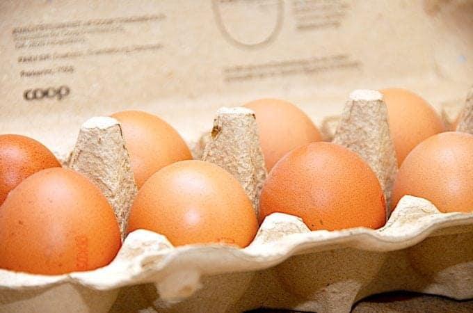 billede af æg til artikel om salmonella i æg
