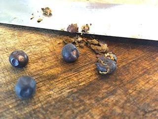 billede med knuste tørrede enebær til gammeldags oksesteg