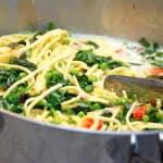 billederesultat for pasta med laks og spinat