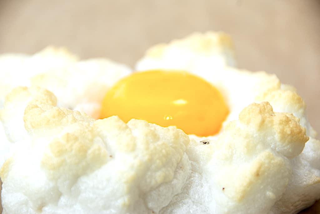 skyæg æggeskyer 3