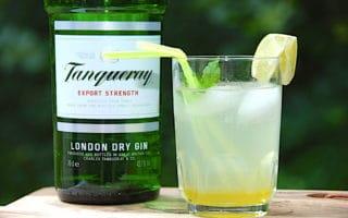 gin hass drink opskrift
