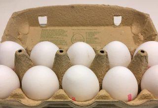 Æg i æggebakke til artikel om myter om æg