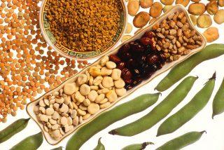 Bælgfrugter - linser, bønner og ærter