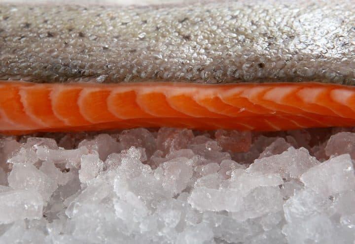 Laks på køl, ill. til artikel om hvor længe mad kan holde sig i fryseren