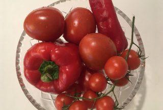 Røde frugter - illustration til artikel om corona