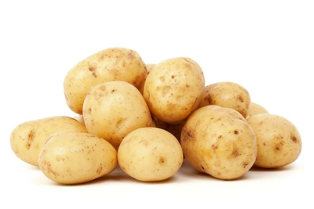 Kartofler til Madensverden.dk, ill. til artikel om grønne kartofler