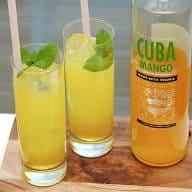 billederesultat for Mango Hazz drink