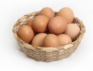 Ill. til indlæg: er æg sundt