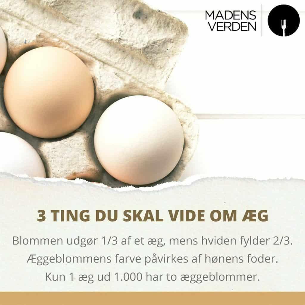 fakta om æg