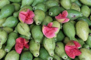 Guavaer