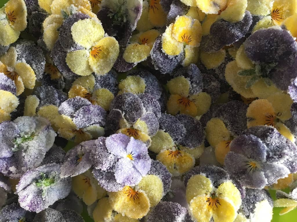 Kandiserede blomster - så nemt kan du gøre  det