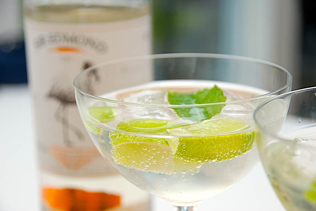 billederesultat for gin