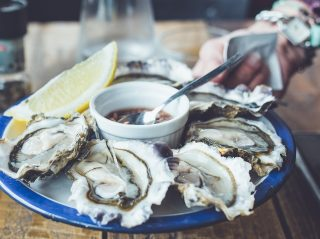 billederesultat for østers