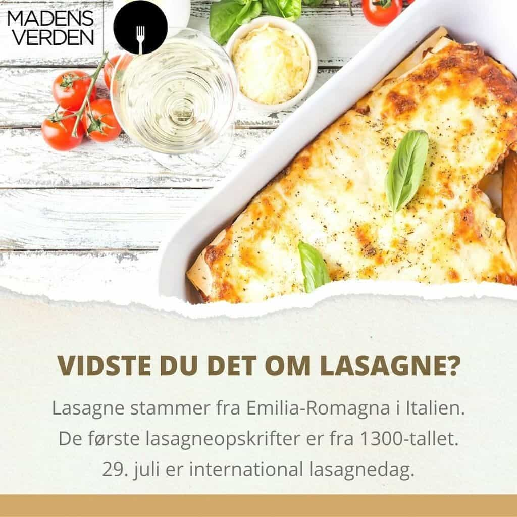 fakta om lasagne grafik