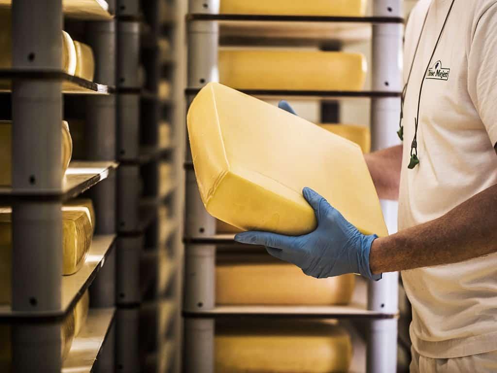 Danske oste på mejeri