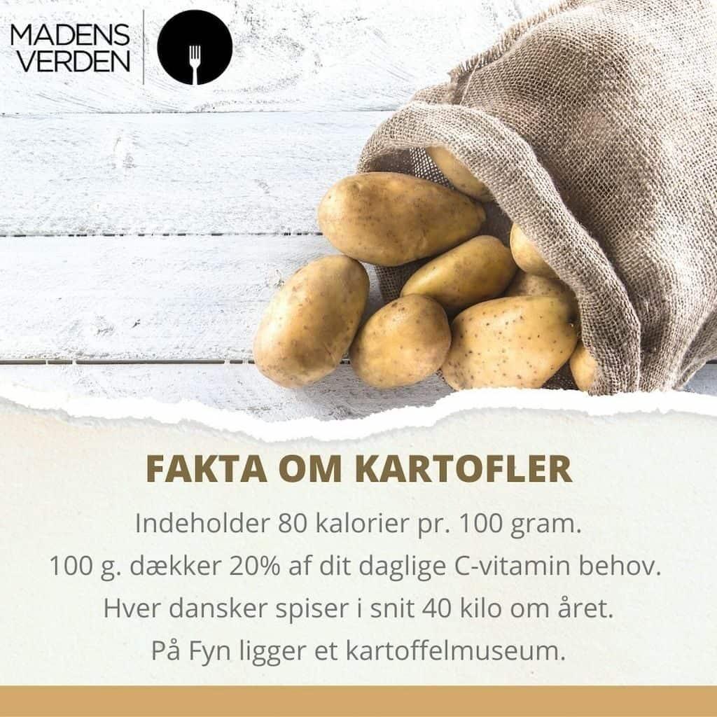 grafik fakta kartofler