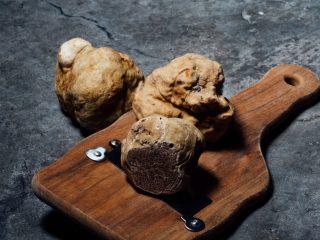 Hvide trøfler er blandt verdens dyreste mad