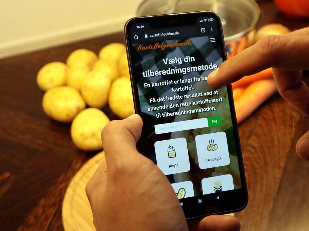 Guide til kartoffelsorter
