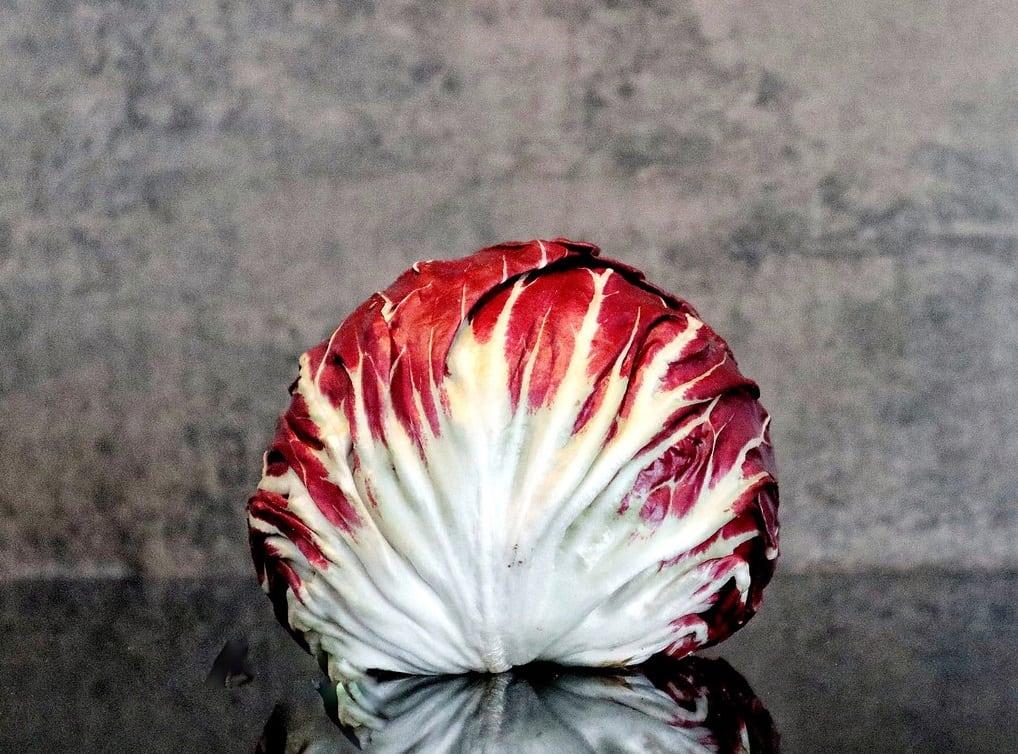 Radicchio - italiensk salathoved