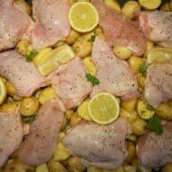 Græsk kylling rå
